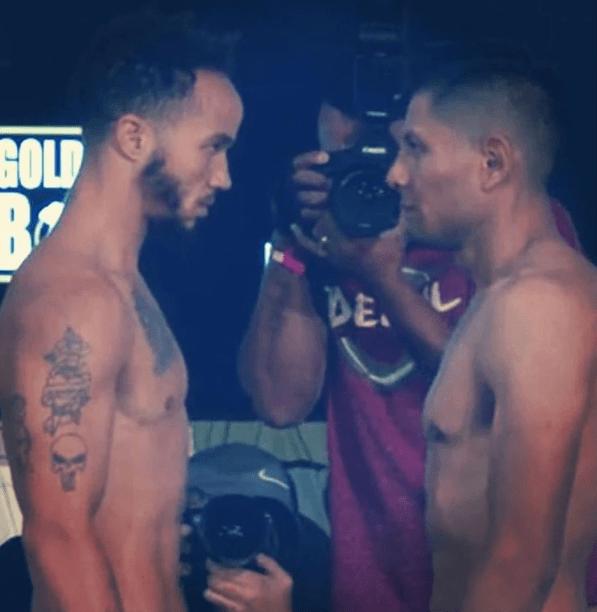 Box pelea