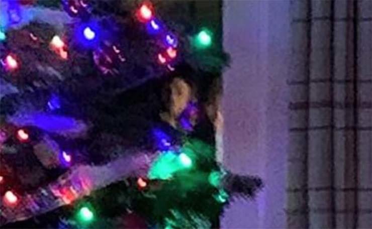Fantasma, Navidad