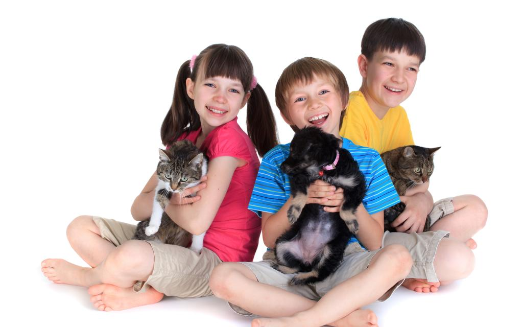 Niños con perro y gato