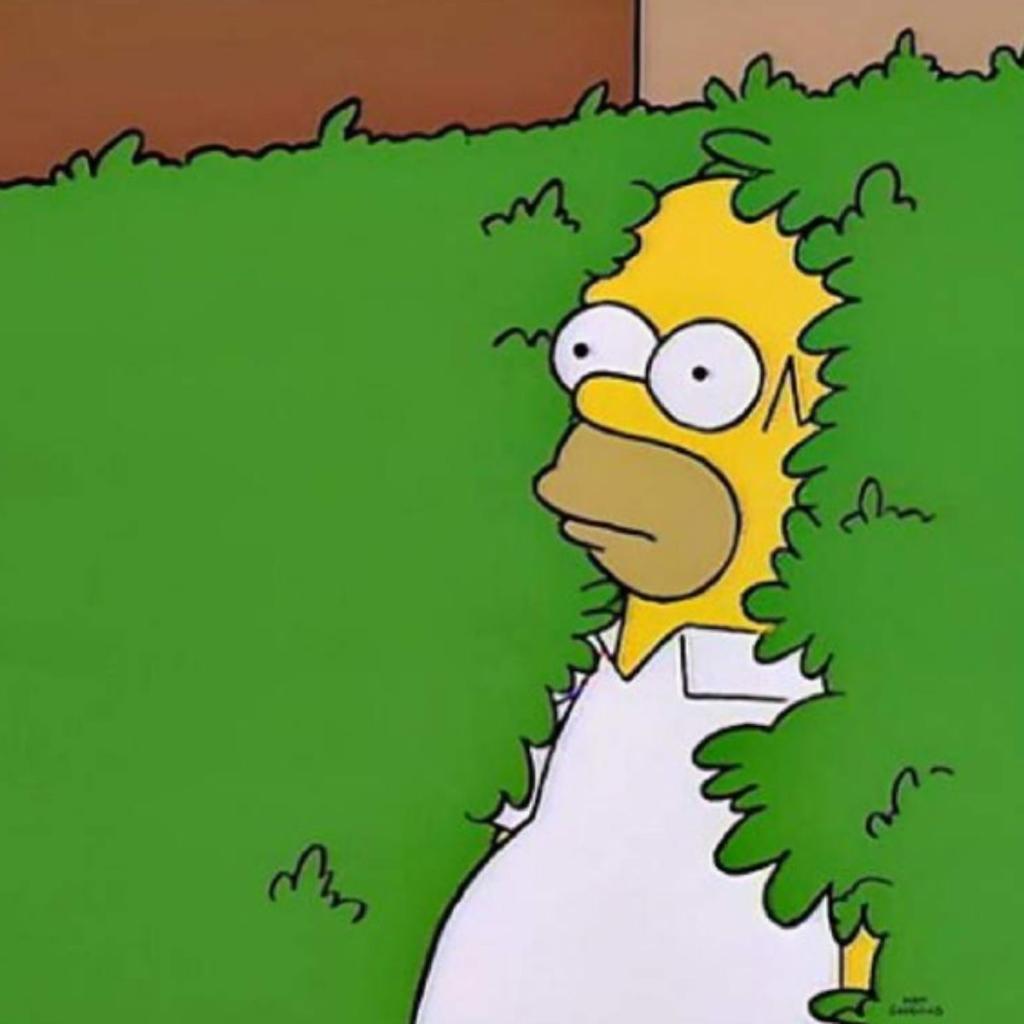 Homero meme