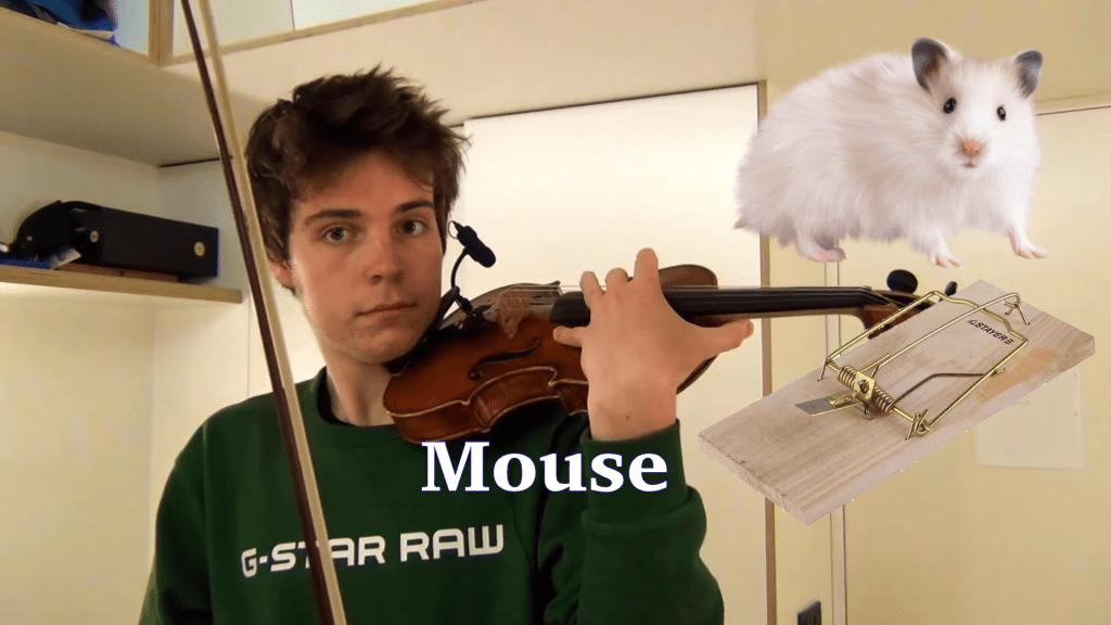 Joven violín