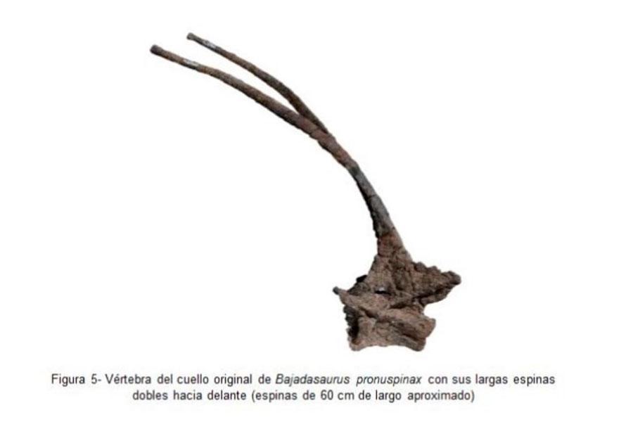 dinosaurio encontrado en argentina