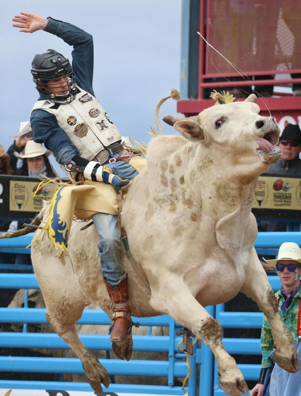 Festival de Vaqueros Maltrato Animal