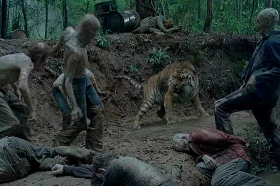 The Walking Dead: King Ezekiel loses army and tiger